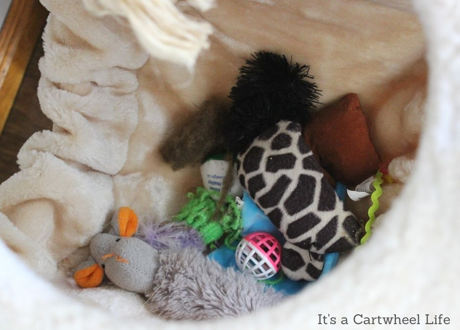 cat toys in cat tree hammock