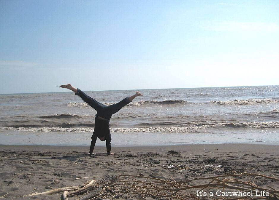 cartwheeling at beech