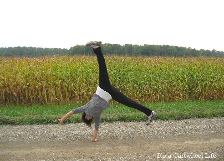 cartwheeling at cornfield
