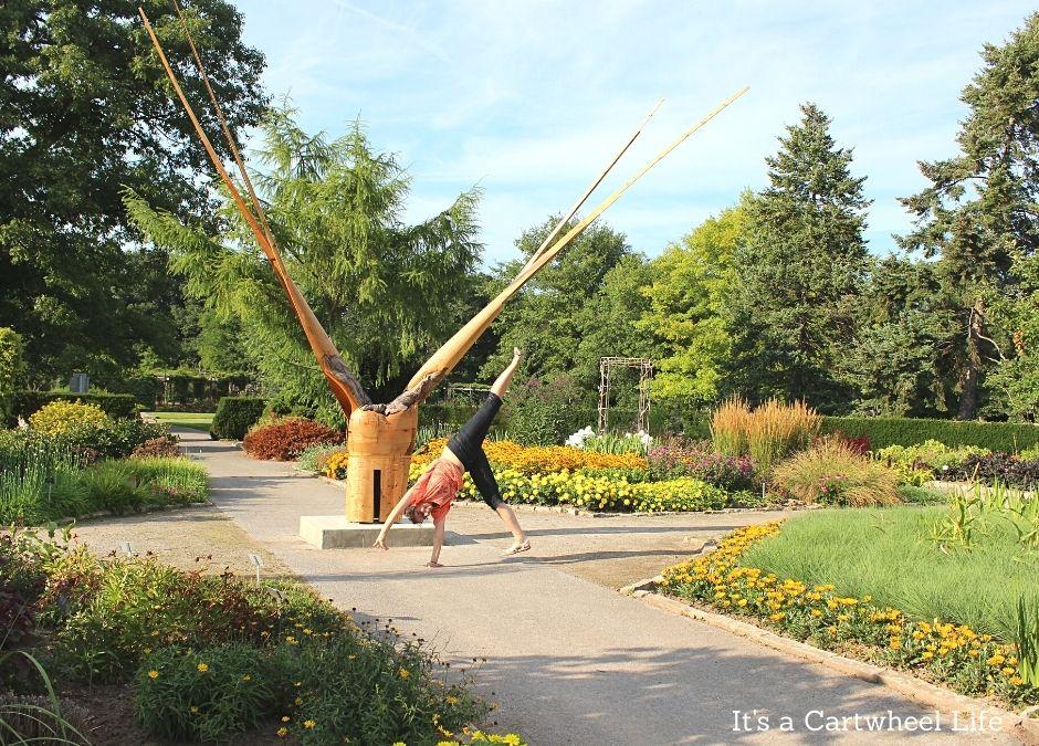 cartwheeling at botanical gardens