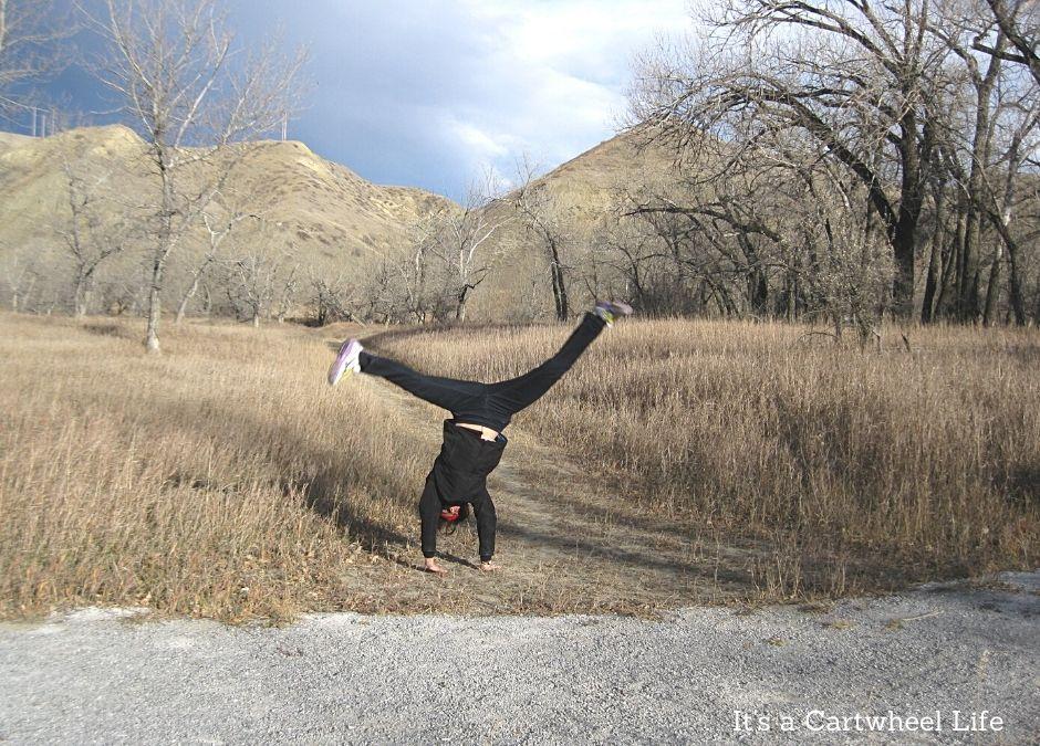 cartwheeling near coulees
